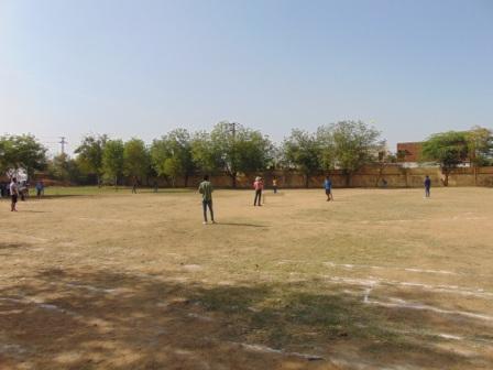 btti sport cricket